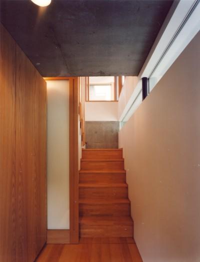 階段 (【川口の家】  柱と梁の立体格子がつくる巨大なワンルーム)