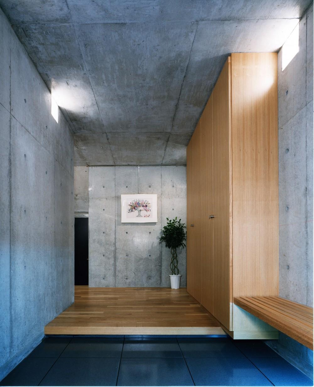 【T字路に建つ家】  外へと膨らみ内を包み込む曲面の壁 (玄関)