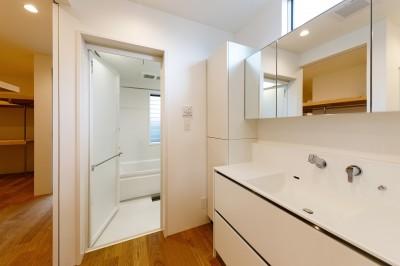 haus-slit 洗面室 (haus-slit / 稜線に沿ったスリットで自然を感じる中庭住宅)