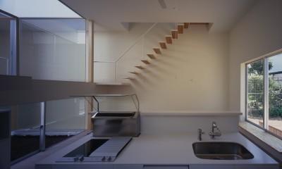高知の住宅 (キッチン)