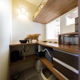 Y邸-長年の家への不満をリノベーションで解決! 猫4匹と快適に暮らす