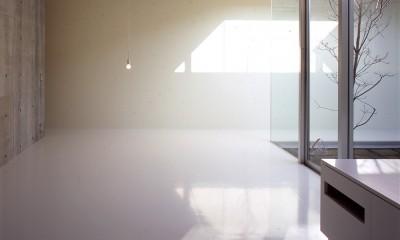 下丸子の平屋 (親世帯リビング、ダイニング)