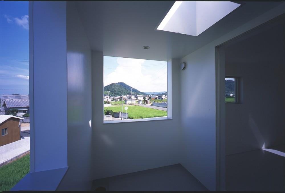 高松の住宅 (テラス)