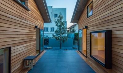 尾張旭の住宅 自然と呼応するモダンウッドハウス (中庭)