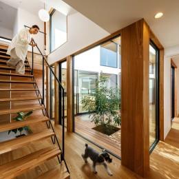 haus-cros / 十字フレームが印象付ける和洋折衷テイストの箱型中庭住宅 (haus-cros 階段&中庭)