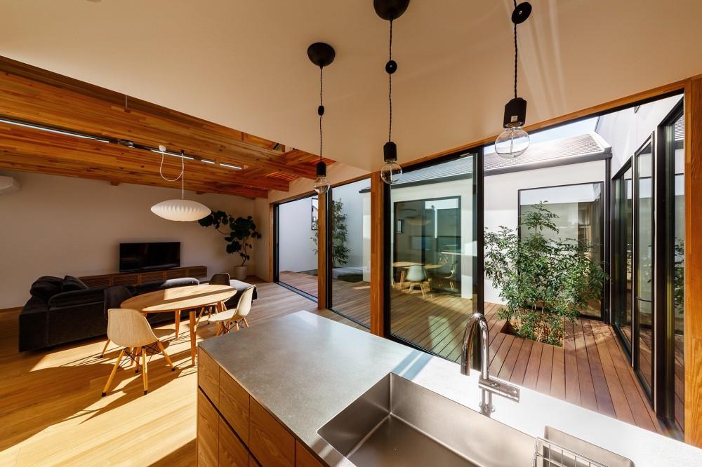 haus-cros / 十字フレームが印象付ける和洋折衷テイストの箱型中庭住宅 (haus-cros キッチン&中庭)