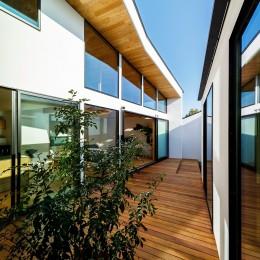 haus-cros / 十字フレームが印象付ける和洋折衷テイストの箱型中庭住宅 (haus-cros 中庭)