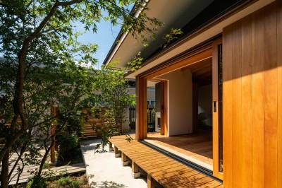庭からの外観 (鎌ヶ谷の家D ー私だけの平屋ー)