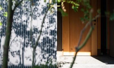 鎌ヶ谷の家D ー私だけの平屋ー (玄関)