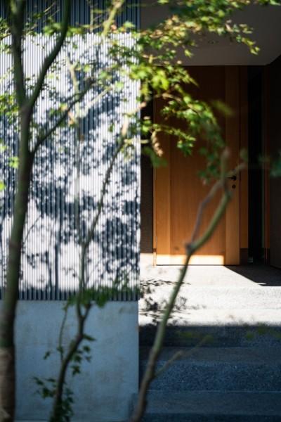玄関 (鎌ヶ谷の家D ー私だけの平屋ー)