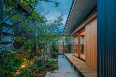 庭の夕景 (鎌ヶ谷の家D ー私だけの平屋ー)