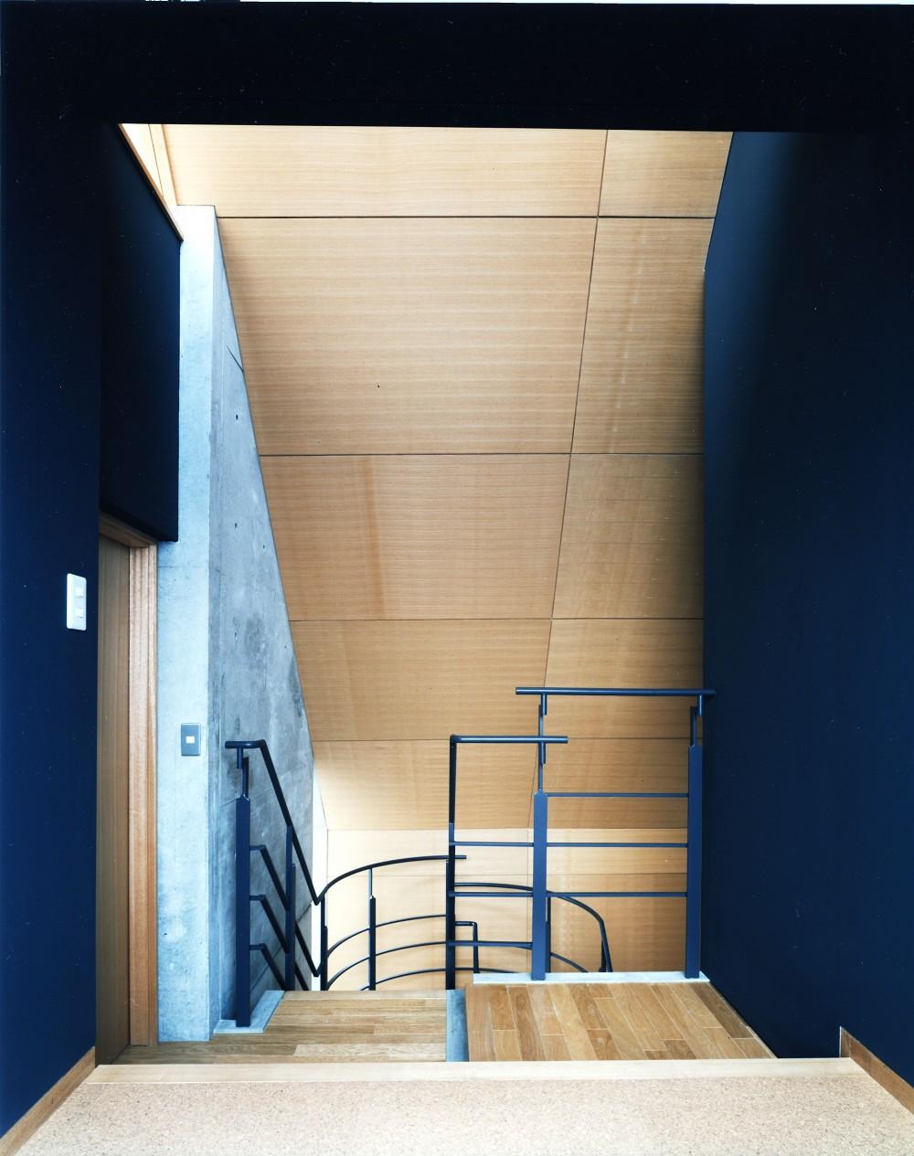 【T字路に建つ家】  外へと膨らみ、内を包み込む曲面の壁 (階段)