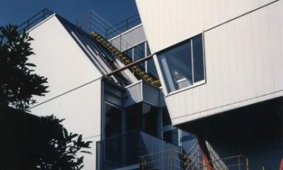 【相模原の動物病院】  人6人、犬3匹、猫10匹が住む高密度の建築