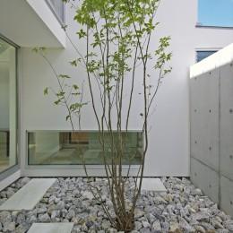 大脇の家-owaki