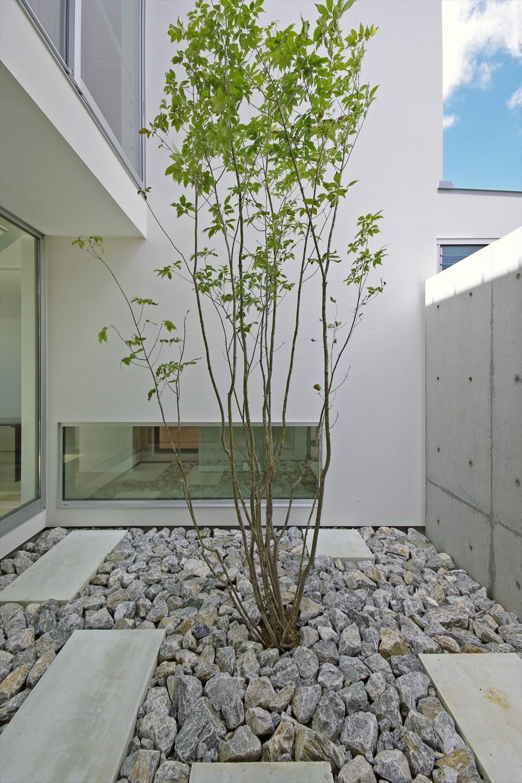 大脇の家-owaki (坪庭)