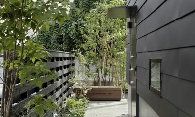 桜上水の住宅 / 半地下と屋上の効果 (アプローチ)
