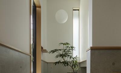 玄関|桜上水の住宅 / 半地下と屋上の効果
