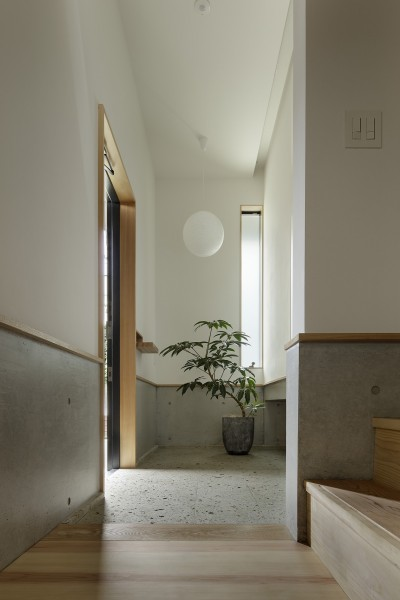 玄関 (桜上水の住宅 / 半地下と屋上の効果)