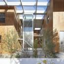高尾の家  / 2つのテラスと大きなガラスドアで緩やかに自然を取り込む家の写真 ガラス屋根