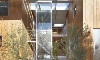 高尾の家  / 2つのテラスと大きなガラスドアで緩やかに自然を取り込む家 (ガラス屋根)