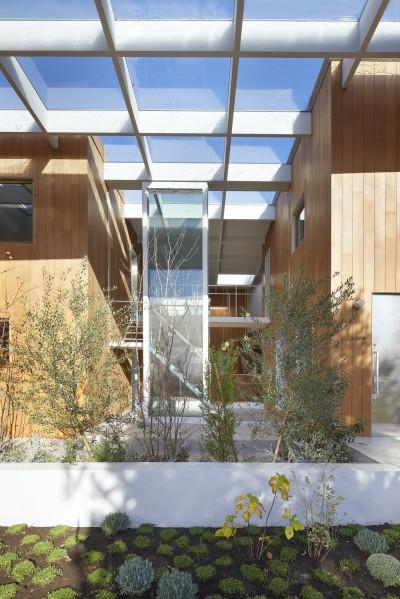 ガラス屋根 (高尾の家  / 2つのテラスと大きなガラスドアで緩やかに自然を取り込む家)