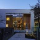高尾の家  / 2つのテラスと大きなガラスドアで緩やかに自然を取り込む家の写真 夜景