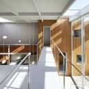 高尾の家  / 2つのテラスと大きなガラスドアで緩やかに自然を取り込む家の写真 ブリッジ