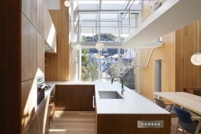 キッチン (高尾の家  / 2つのテラスと大きなガラスドアで緩やかに自然を取り込む家)