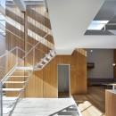 高尾の家  / 2つのテラスと大きなガラスドアで緩やかに自然を取り込む家の写真 階段