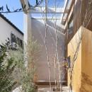 高尾の家  / 2つのテラスと大きなガラスドアで緩やかに自然を取り込む家の写真 テラス