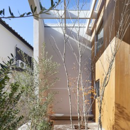 高尾の家  / 2つのテラスと大きなガラスドアで緩やかに自然を取り込む家 (テラス)