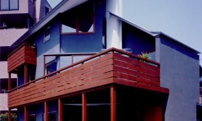 【市川の家】 光を求めて空へとのびるOMソーラーの家 (外観)