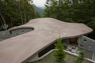 コンクリート屋根を敷地上部より見おろす (軽井沢カウンターポイント - 森に浮かぶコンクリート屋根の別荘 -)