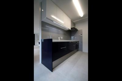 キッチン (窓からの明るい光がLDKに差し込む綺麗めな空間に)