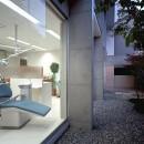 住吉町歯科+住宅 診察室から見る中庭+専用住宅の写真 住吉町歯科+住宅