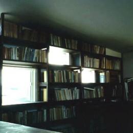 3断面の家 - 寒冷地のコンパクト住居 (本棚に組み込まれたランダム窓)
