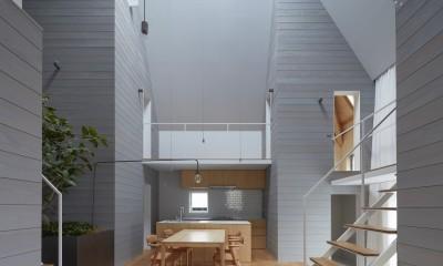 岩倉の家 / 閉じて開放感を得るトップライトハウス (LDK)