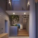 岩倉の家 / 閉じて開放感を得るトップライトハウスの写真 エントランス