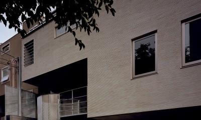 【フラッツS <祖母の家>】 都心の山岳都市住宅 (外観)