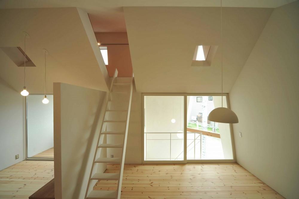 shiro house (リビングルーム)