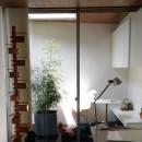 所沢の住宅の写真 リビングからインナーバルコニーを眺める