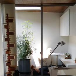所沢の住宅 (リビングからインナーバルコニーを眺める)