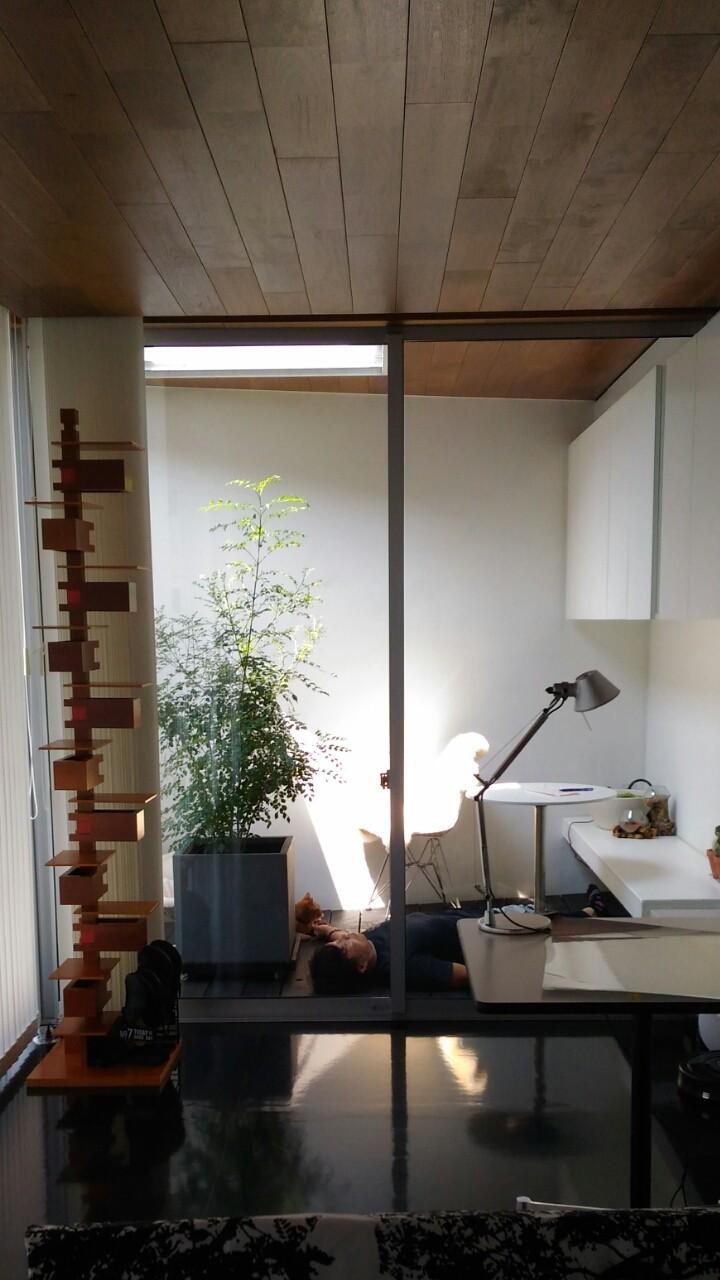 リビングダイニング事例:リビングからインナーバルコニーを眺める(所沢の住宅)