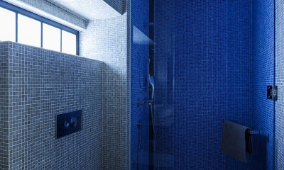 SENSUOUS-築50年以上の古さを生かし、デザインと素材にこだわった家づくり (トイレ・シャワー室)