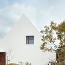 大垣の家 / インナーテラスに囲まれた三角屋根の家の写真 外観