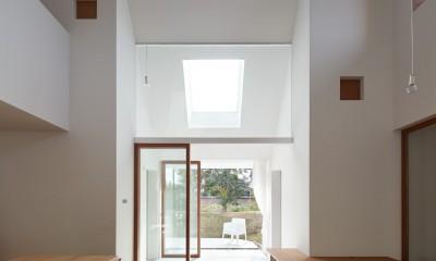 大垣の家 / インナーテラスに囲まれた三角屋根の家 (リビング)