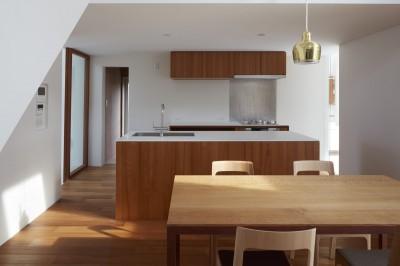 キッチン (大垣の家 / インナーテラスに囲まれた三角屋根の家)