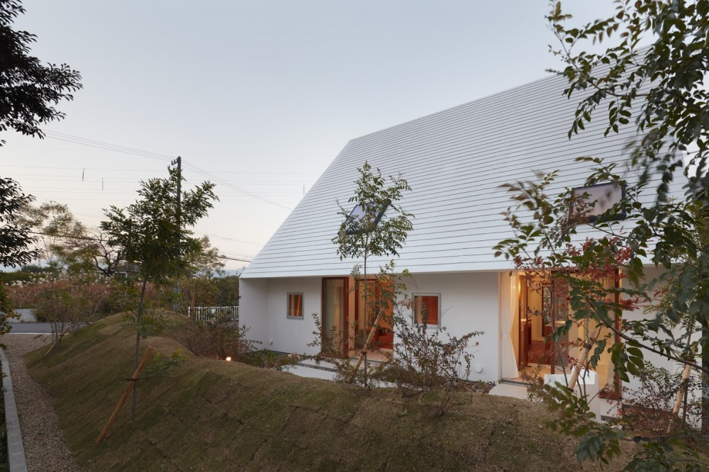 大垣の家 / インナーテラスに囲まれた三角屋根の家 (庭)