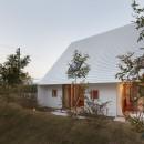 大垣の家 / インナーテラスに囲まれた三角屋根の家の写真 庭