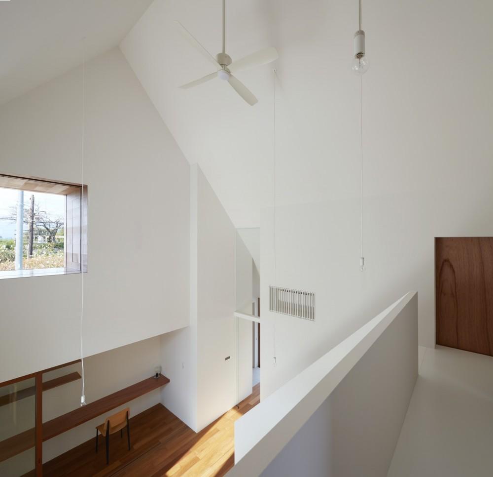 大垣の家 / インナーテラスに囲まれた三角屋根の家 (吹き抜け)